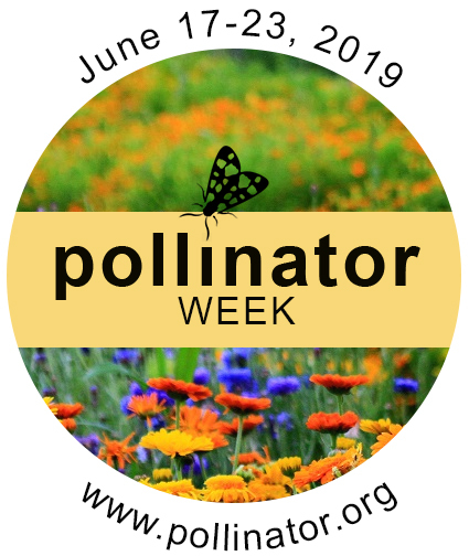 National Pollinator Week badge